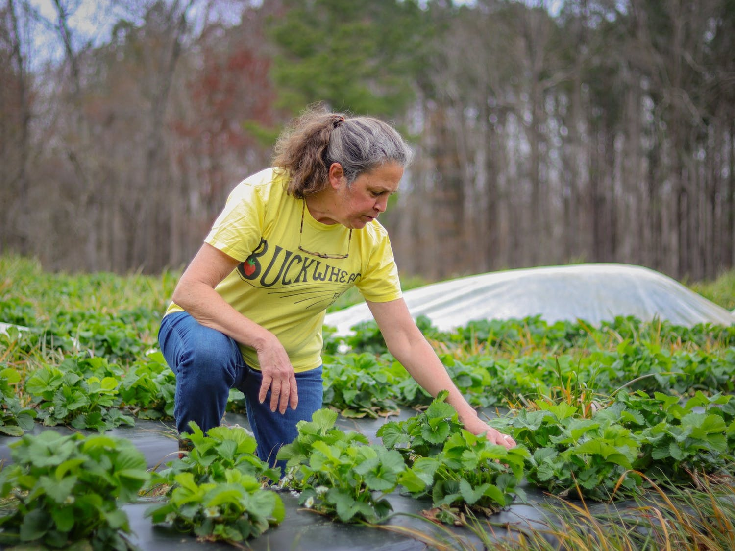 """Karma Lee is the owner of Buckwheat Farms which has been open in Apex for 23 years. """"Last year when the pandemic hit, we weren't even sure we were going to be able to be open for business, but when we found out we were, we knew we had to make a lot of changes,"""" said Lee."""