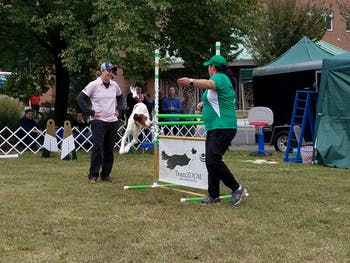 Barktoberfest will be held on Saturday, Oct. 26 at Durham Central Park, hosted by Durham Parks and Recreation and Beyond Fences. Photo courtesy of Durham Parks and Recreation.