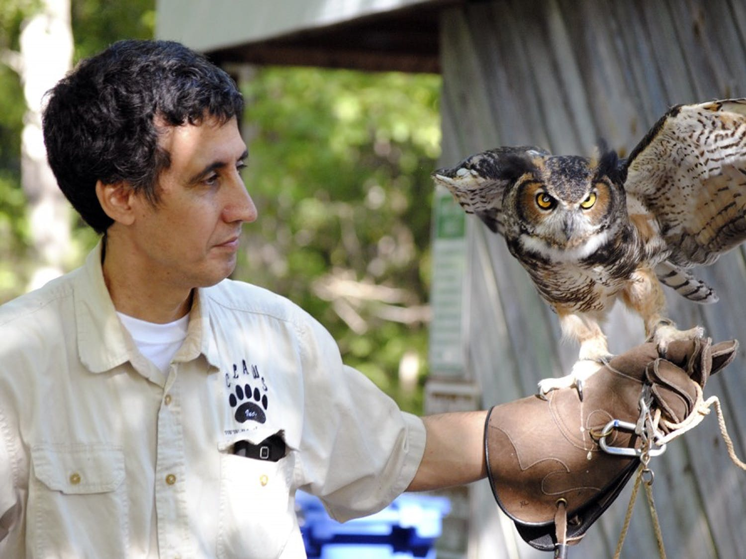 Vinny Mammone, treasurer for Claws Inc., holds one of the organization's permanent residents Khalitra, a great horned owl who is blind in one eye.