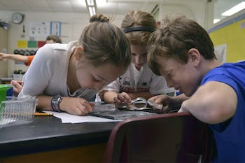 Students at Carrboro Elementary School attend classes in English for half of the day and a foreign language for the second half of the day as part of a dual language immersion program. These programs result in higher EOG test scores. Nathan Ludington (10), Lucy Mills (9), and Maddie Hamilton (10) study fossils during the English portion of their day.
