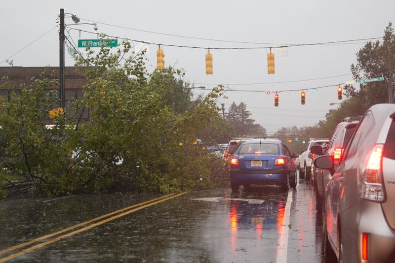 A tree fell down on Franklin and Columbia Street causing traffic problems on Thursday afternoon during Hurricane Michael.
