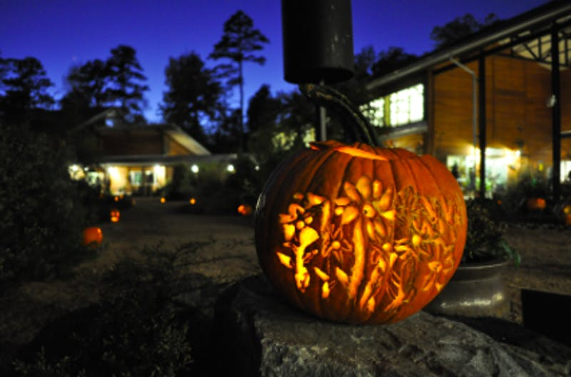 One of the many pumpkins placed along the paths in during the BOOtanical in 2017. Photo courtesy of North Carolina Botanical Garden.