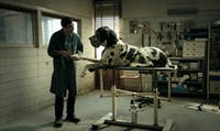 """""""Dogman,"""" directed by Marcell Fonte will be screened at the festival. Photo courtesy of Cynthia Raza."""