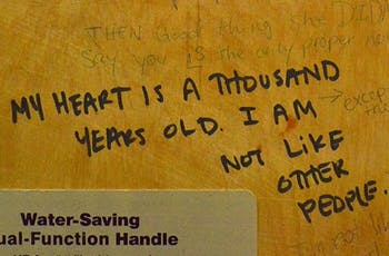 Across campus, graffiti can be found tucked away in public places. Dey Hall's fourth floor bathroom has an especially decorated stall, complete with quotes, personal statements, and drawn-out discussions.