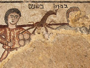 A team of UNC archeologists uncovered this mosaic in Galilee this summer. Photo courtesy of Jim Haberman.