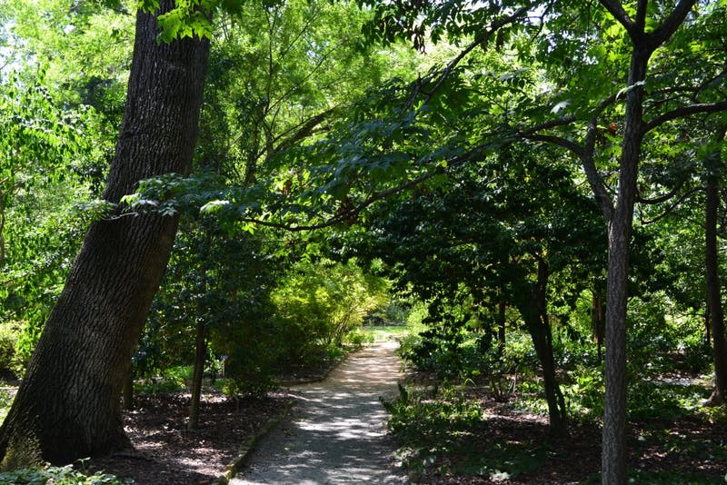 Try venturing into Coker Arboretum for some rest and relaxation.