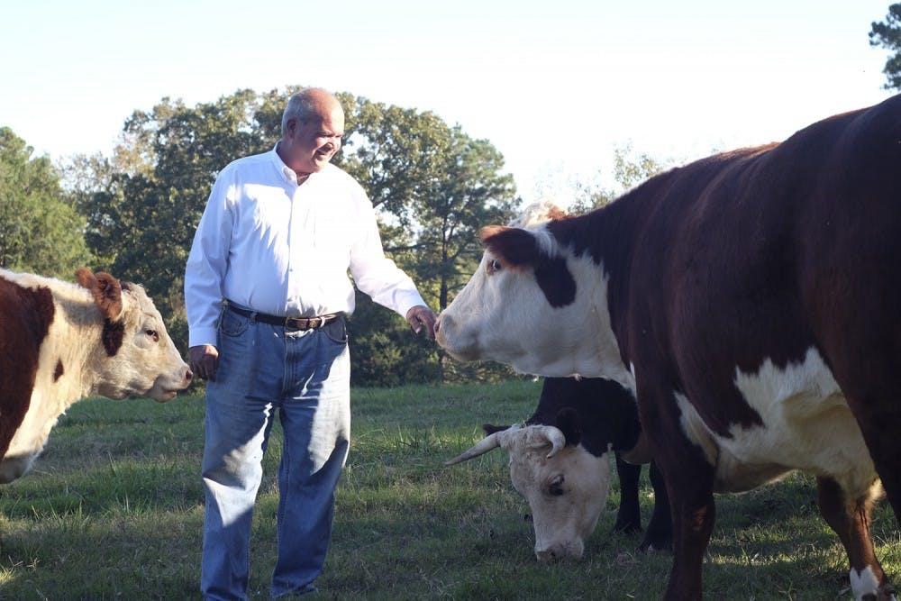 Lake Hogan Farm praised for its 'agritourism'