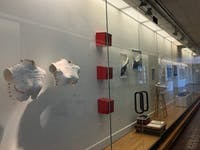 """The 2018 Undergraduate Studio Art Awards Exhibition, """"Occluded Front,"""" will be on display until March 18."""