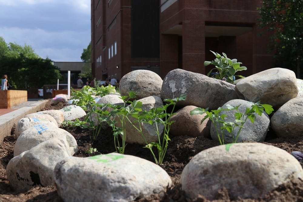 UNC celebrates Earth Week with gardens, greenhouses galore
