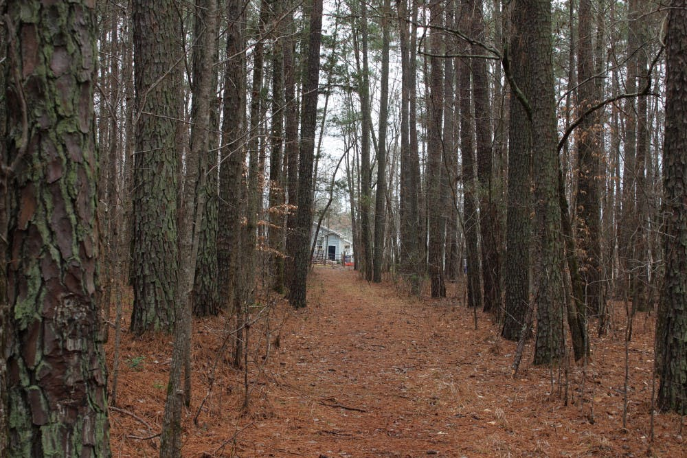 Orange County, Chapel Hill, Carrboro make plans for the 164 acres bought 35 years ago