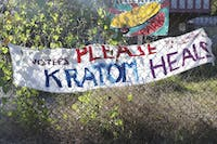A banner calling for voters to not outlaw kratom hangs on a fence on the corner N. Greensboro St.and E. Weaver St.