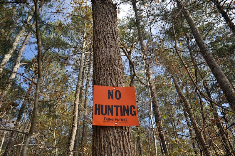 A sign restricts hunting in Duke Forest located at the intersection of Eubanks Road and Old NC 86 on Sunday, Nov. 24, 2019. Plans to develop the land near Eubanks Road and Old NC 86 raised concerns from residents about how Duke Forest's research and natural sites would be affected.