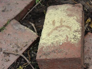 A brick covered with pollen outside of South building on Sunday, April 4, 2019.