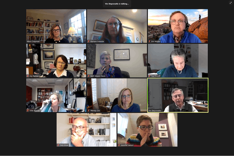 Members of the UNC Faculty Executive Committee meet over Zoom to discuss the spring semester on Monday, Nov. 2, 2020.
