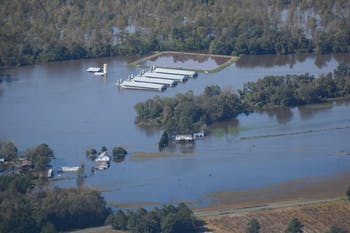 Many hog waste lagoon in the state became flooded after Hurricane Matthew, such as this one near the La Grange River. Photo courtesy ofTravis Graves.