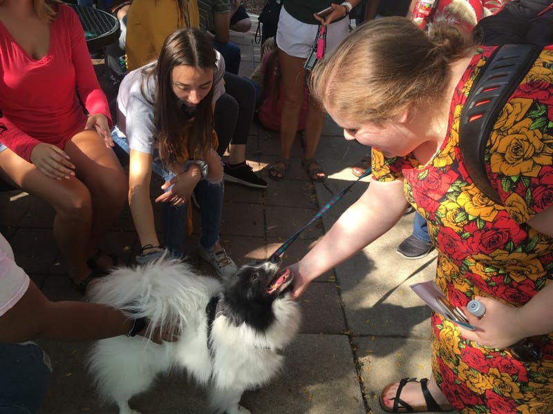 The Wellness Woof isn't just about helping students manage through stress, but it's also about brining diverse groups in the campus community together, according to Nick Pomante, student coordinator at the Office of Wellness and Community Responsibility. The next Wellness Woof will be October 16 from 4-6 p.m. at the Lake House.
