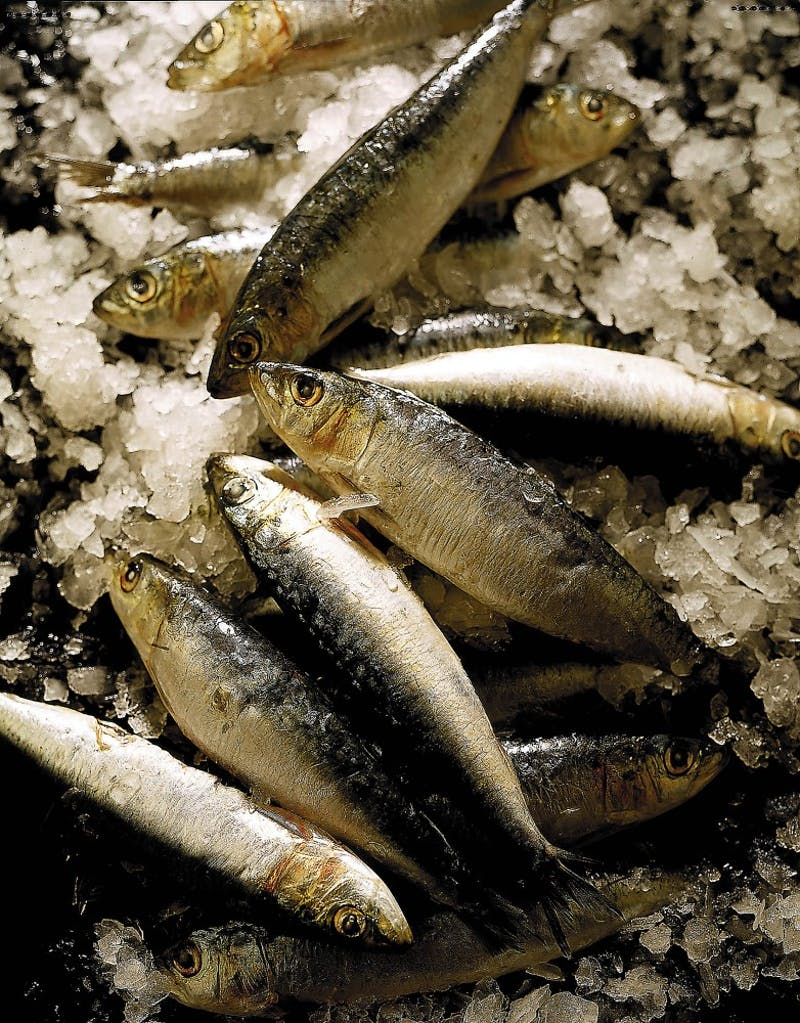 No converstaion about the anti-inflammatory diet would be complete without mentioning fish, Smaller fish such as sardines and herring are less vulnerable to pollutants because the bigger the fish the higher the potential pollutant level.