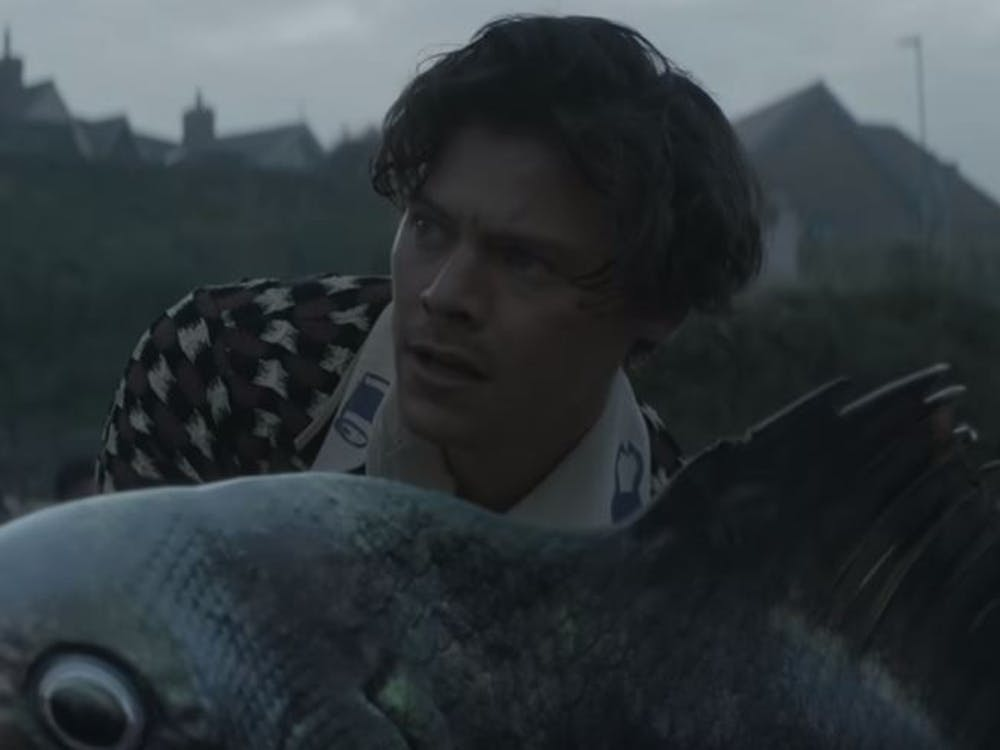 Harry Styles takes us to Eroda and befriends a massive fish.Photo Courtesy of Vevo