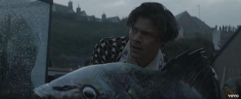 Harry Styles takes us to Eroda and befriends a massive fish.Photo Courtesy of Vevo