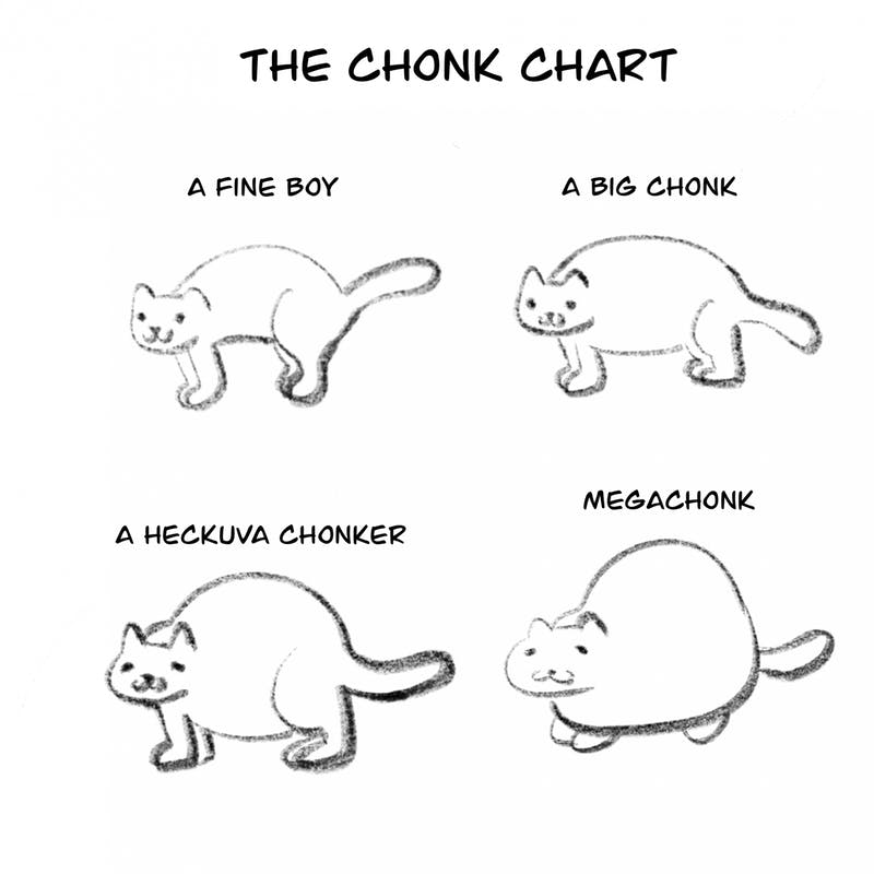 Ever needed to know your cat's chonk status? Follow our handy chart!