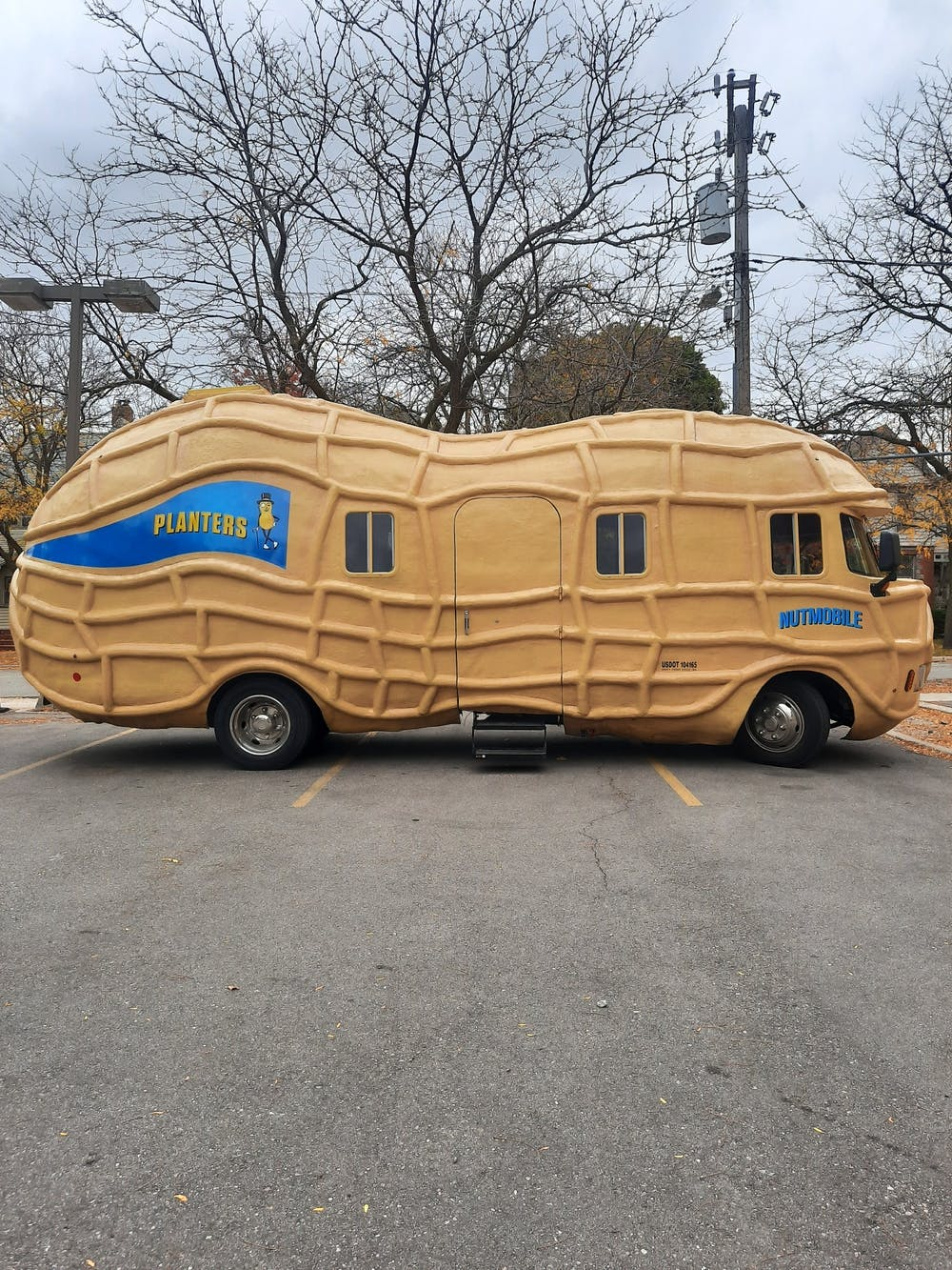 Opinion: You should visit the Nut-mobile