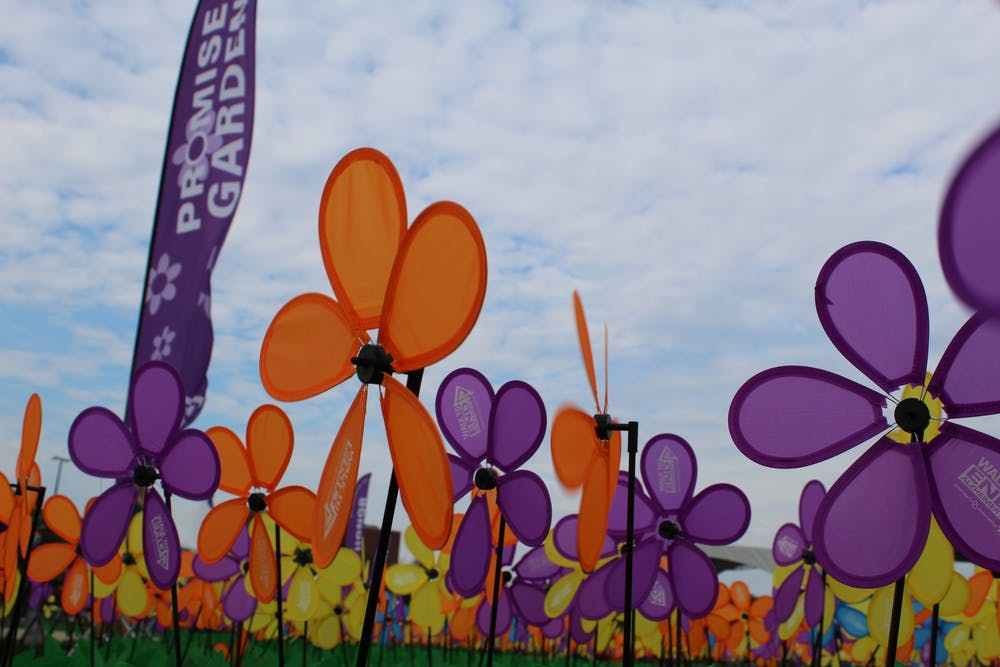 Washtenaw County's Walk to End Alzheimer's to take place in-person this year