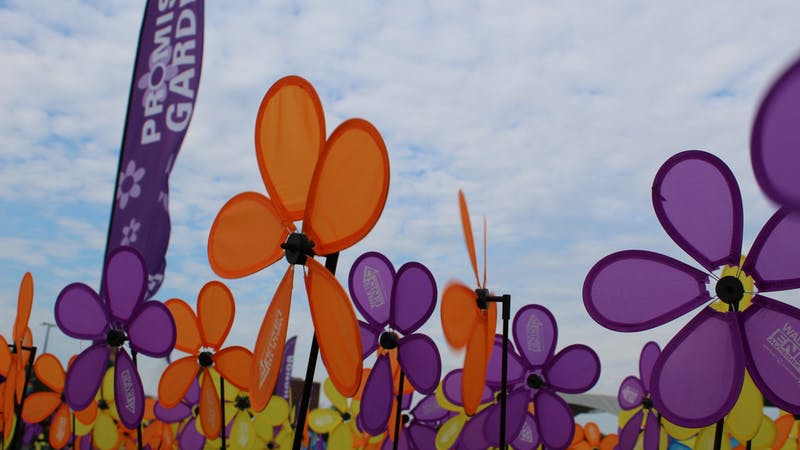 The Promise Garden from the 2019 Washtenaw Walk to End Alzheimer's in which the different colors of the flowers represent the walk participants' connection to the disease and their reasons to end it. (Photo Courtesy of Halle Prynn)