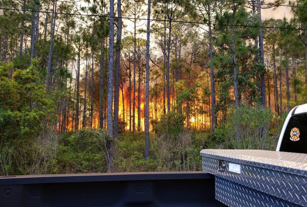 us-news-florida-forest-service-warns-of-1-dbn-1