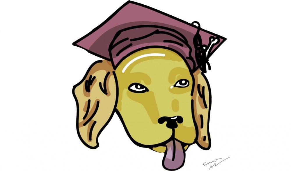 doggraduation