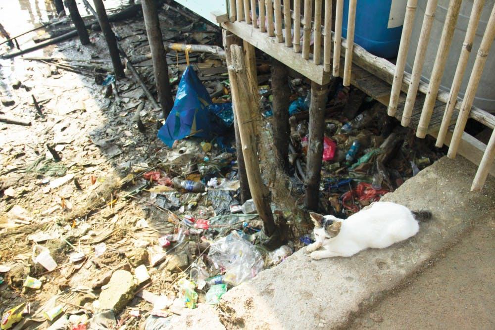 Reduce, reuse, throw away?