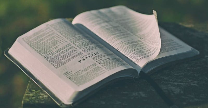 The Psalms demonstrate the humanness of their authors.