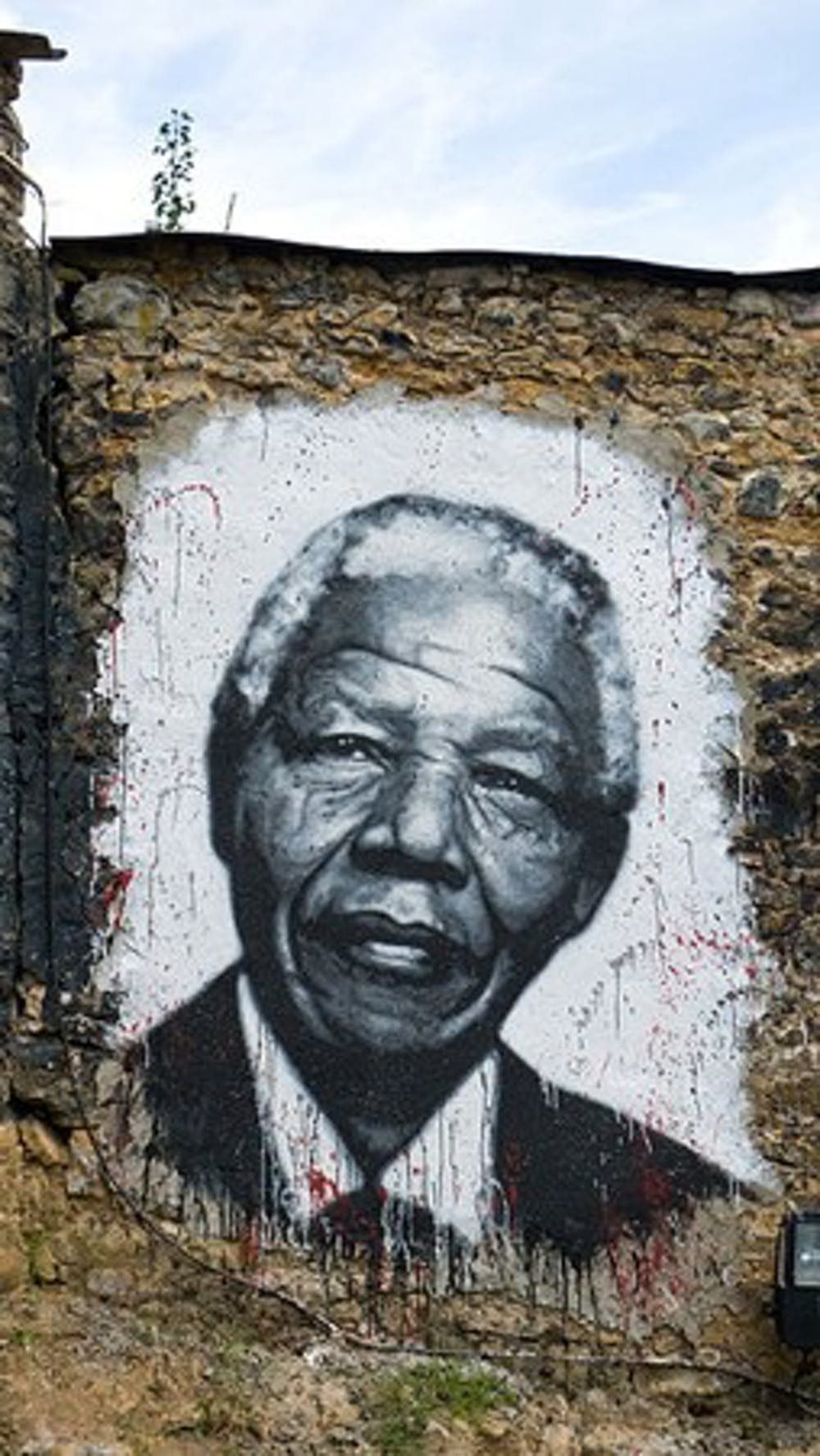 A professor remembers Nelson Mandela