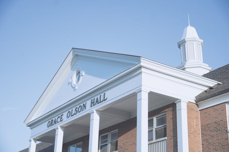 Grace Olson Hall is one of the many dorms that has experienced trouble with bees and wasps.