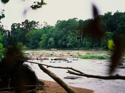 nature_falls_2.jpg