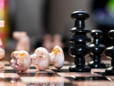 aaron_falls_chess-3.jpg