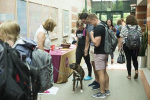 GVL / Luke Holmes - Students check out Becky Baker's therapy dog, Lilley. The Volunteer/Non-Profit Internship Fair was held in Henry Hall on Thursday, Sep. 8, 2016.