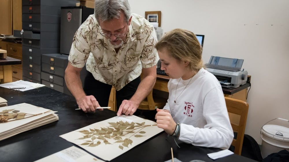 IU Herbarium director Eric Knox, left, and a student work with a preserved plant specimen. The IU Herbarium recently finished a five-year project compiling more than 160,000 specimens from its preserved plant collection and is publishing it in an online database.