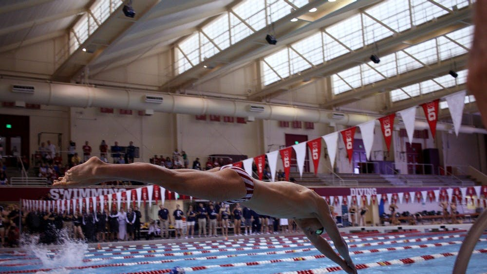 Freshman Van Mathias dives into the water at the quad meet against Kentucky, Missouri and Notre Dame. Mathias's team came in fourth place in the men's 200-yard medley relay.