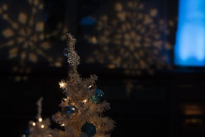 A decorated tree is shown Dec. 13 during the Yule Ball in Alumni Hall in the Indiana Memorial Union. The Harry Potter themed dance was filled with numerous performances and activities.