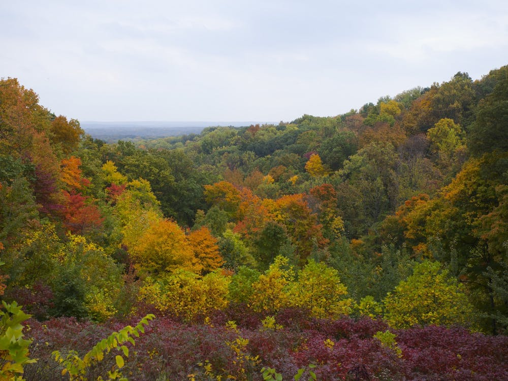 Brown County, Indiana, is pictured.