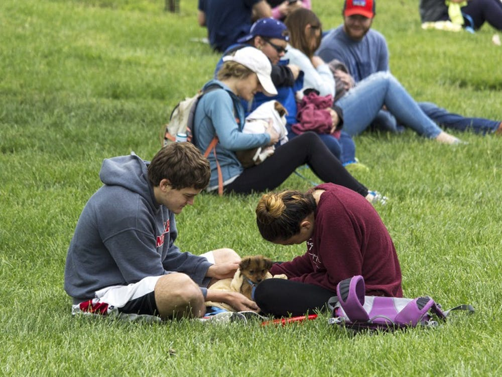 Students gathered in Dunn Meadow Thursday afternoon to participate in the annual Rent-a-Puppy event.