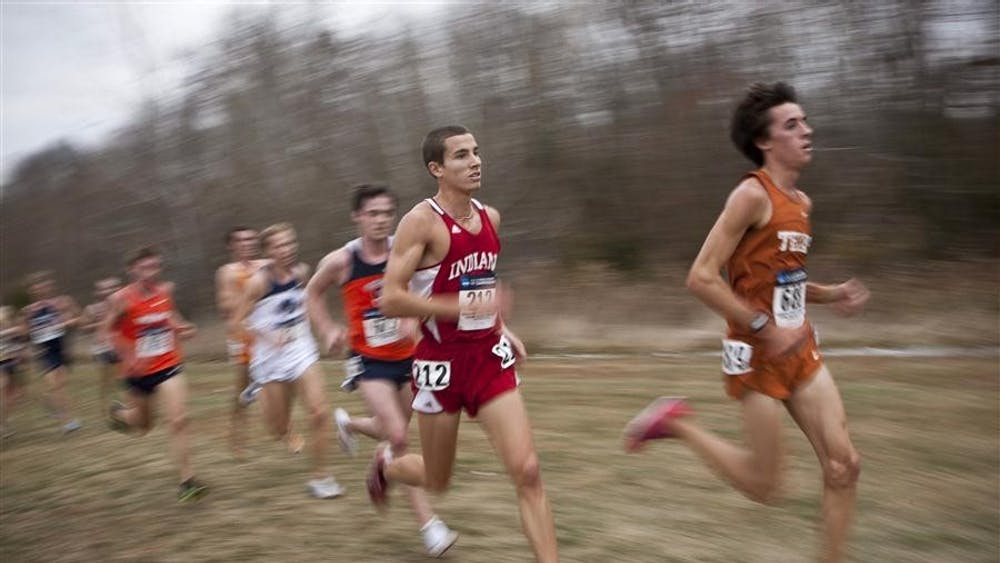 Sophomore Zach Mayhew runs during the NCAA Division I Cross Country Championships on Monday at the LaVern Gibson Championship Course in Terre Haute. The men's team finished seventh of 31 teams.