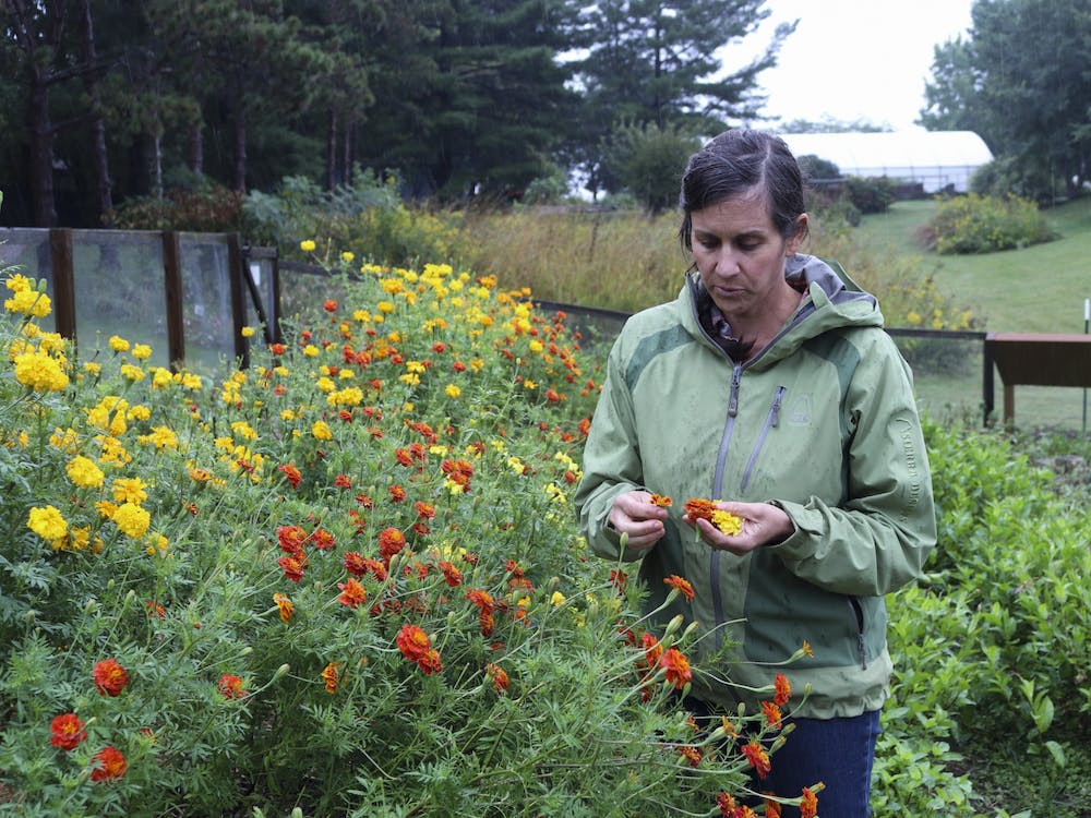 Carissa Carman, Eskenazi School of Art, Architecture + Design senior lecturer, stands in her flower fields at the Hilltop Garden and Nature Center. Carman leads the Color Field Project, which researches ways to sustainably use flowers to produce dyes for fabrics.