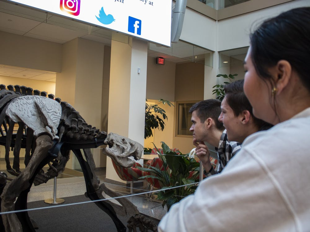 Opinion writers Tom Sweeney, Evan Carnes and Abby Malala stare at the Megajeff recreation Jan. 20 in the Franklin Hall Commons. Megajeff was a Megalonyx jeffersonii, a type of giant ground sloth who roamed the Ohio River Valley during the last Ice Age.
