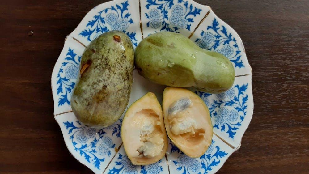 "IDS columnist Katharine Khamhaengwong describes pawpaws as ""sweet and soft, vaguely tropical, somewhere between a mango and a banana — hence the nickname 'Indiana banana.'"""