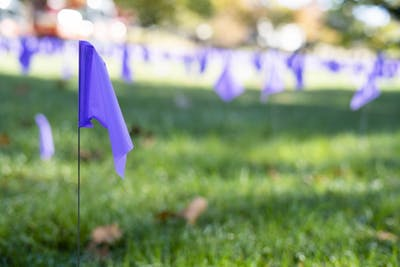 A purple flag sits among others in honor of End Domestic Violence Awareness Month on Oct. 14 in Dunn Meadow. The flags are a memorial for those who have suffered from domestic violence.