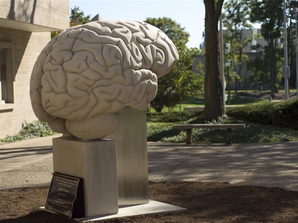 A 7-foot limestone sculpture of the Human Brain stands outside of the Psychology building. This 10,000 lb sculpture is the largest anatomically accurate brain sculpture in the world.