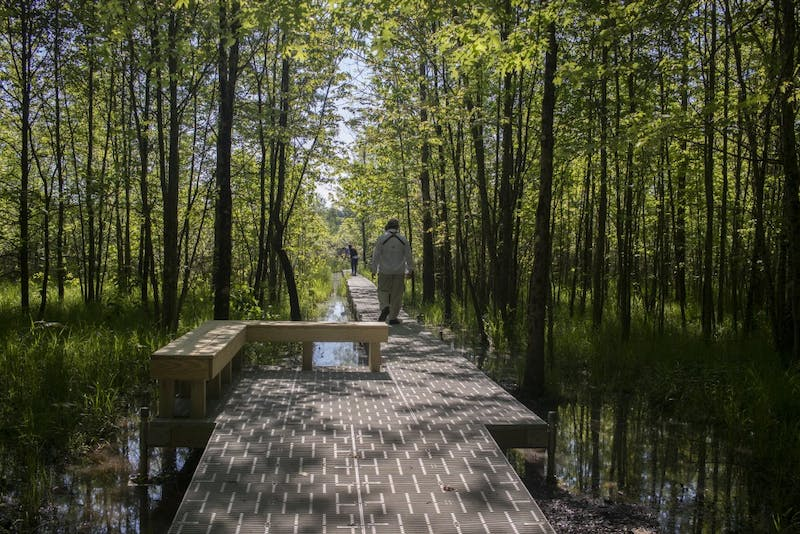 GALLERY: New boardwalk for Beanblossom Bottoms Nature Preserve