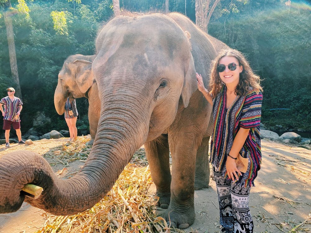 <p>Sydney Tomlinson poses with an elephant in Bangkok during her study abroad trip to Australia. Tomlinson is about to begin her full schedule of classes at the University of New South Wales. </p>