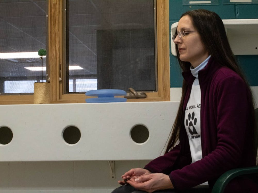 "Kat Forgacs practices reiki with cats Feb. 5 for World Animal Reiki Day at the Bloomington Animal Shelter. Forgacs said, ""Today is a special day for reiki that has been created to help advocate for this practice and also to celebrate it."""